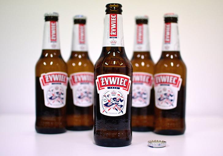 õlu, pudelid, alkoholi, jook, jook, joomine, alkohoolsed