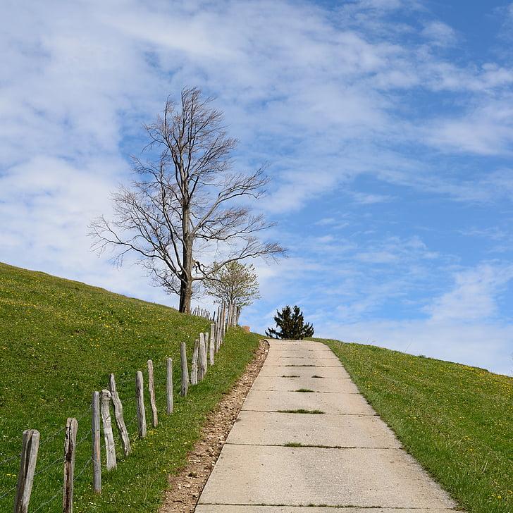 distància, carretera, natura, horitzó, cel, arbre, primavera