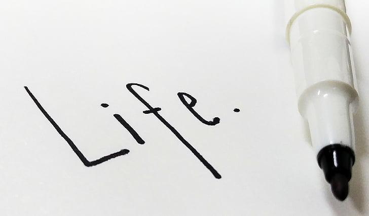 vida, carta, ploma, document de nota, impressió de mà, han escrit