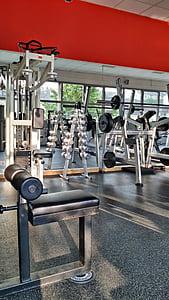formação, desporto, ajuste, desportivo, aptidão, sala de fitness, levantamento de peso