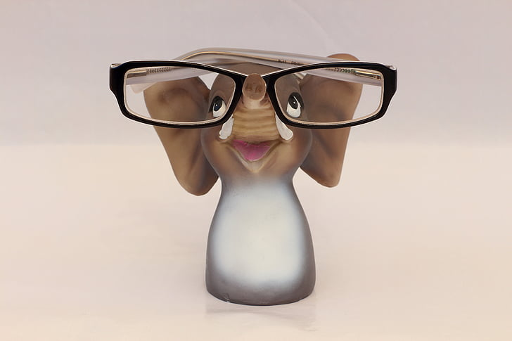 elefant, ulleres, estand d'ulleres, ulleres de lectura, ulleres