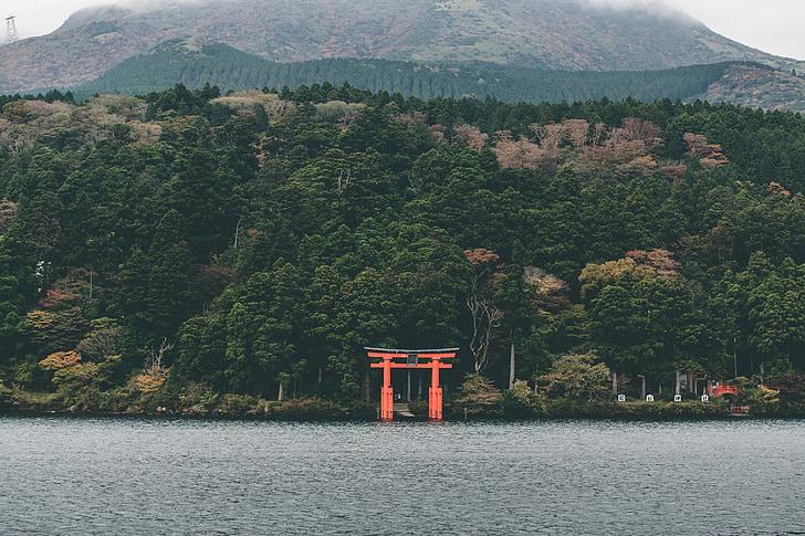 Jaapan, Temple, Pühapaik, religioon, budism, Jaapani, Landmark