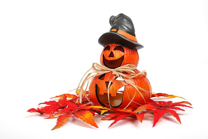 tardor, decoració, cara, tardor, divertit, carabassa, Halloween