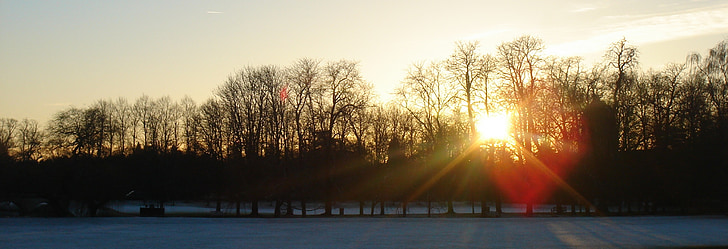 arbres, posta de sol, l'hivern, temporada, nit, silueta