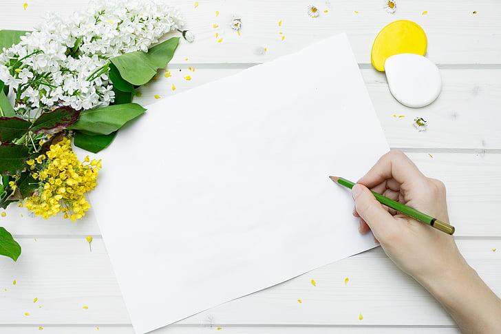 estil de vida, treball, document, llapis, flors, informació turística, blanc