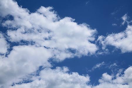 Chmura, niebo, biały chmura, zachmurzone niebo, pochmurno