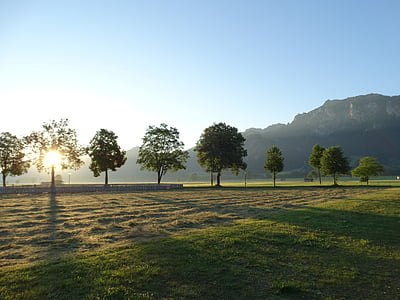 schwangau, alpine, bavaria, sunrise, alpine panorama, avenue, reported