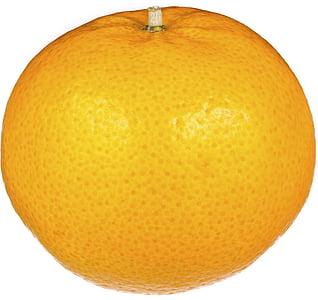 pomarańczowy, owoce, świeży, białe tło, owoce i warzywa, pomarańczowy owoc, jedzenie