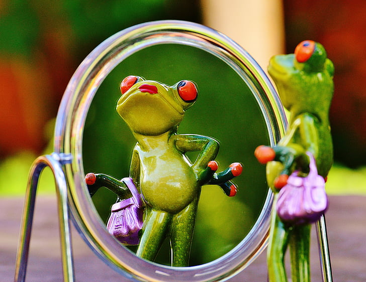 sapo, espelho, imagem de espelho, espelhamento, bonito, engraçado, diversão