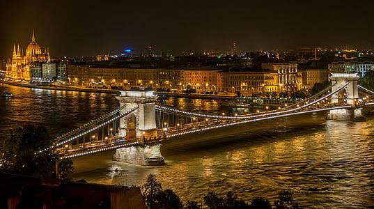 bridge, buildings, city, lights, night, river, suspension bridge