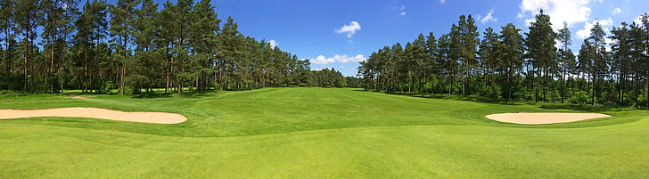 golf, green, fairway, forest, trees, golf-club worpswede, golf course