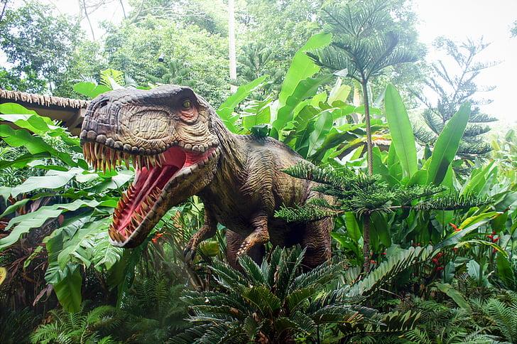 singapore zoo, singapore zoo-rassic park, zoo, dinosaur, nature, forest, tree