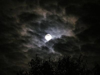 Lluna, llum de lluna, nit, cel, cel de nit, núvols, fosc