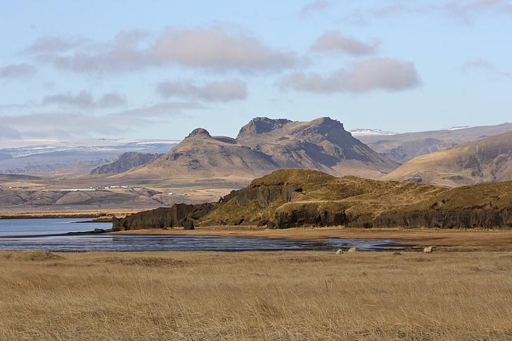 landscape, iceland, wide, nature, south coast, mountains, sheep