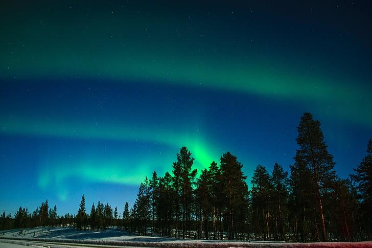 Aurora, Aurora Boreal, luzes do Norte, fenómeno luminoso, Lapland, Lapónia finlandesa, Inari