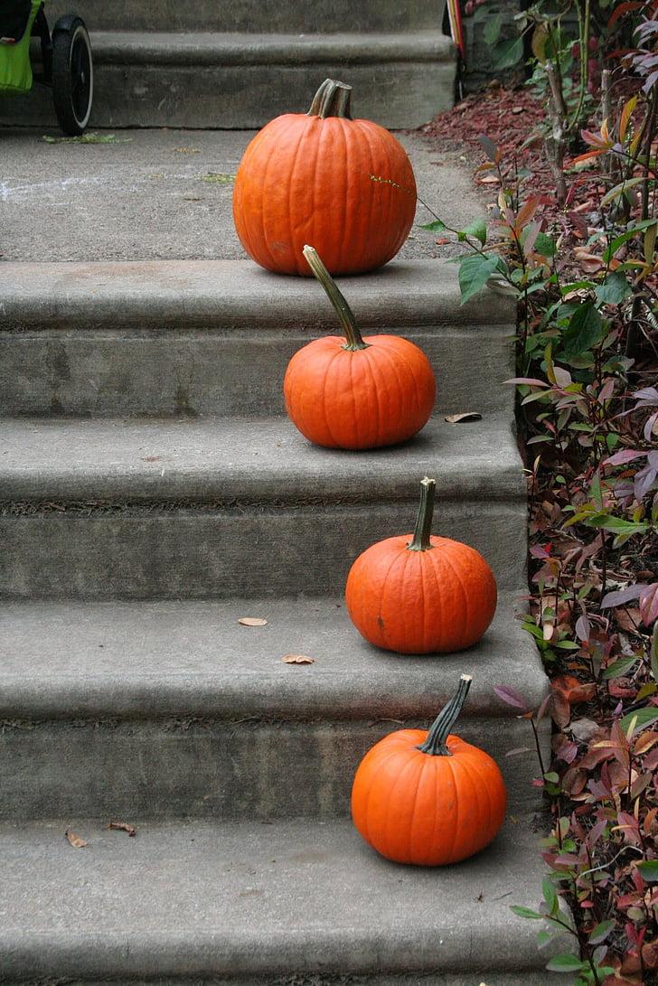 pumpkin, steps, orange, halloween, fall, autumn, entry