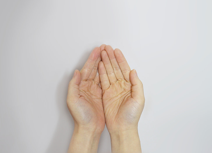 main, aide, amour, mains, doigt, s'il vous plaît, collecte