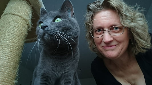 cat, the russian blue, cat and woman, person, animals