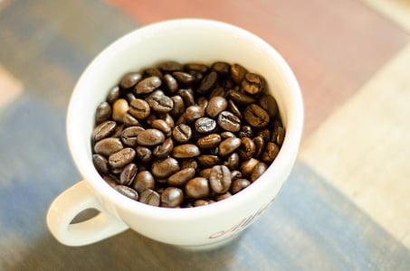 grans de cafè, Copa, cafè, cafeteria, gra de cafè, fesol, marró