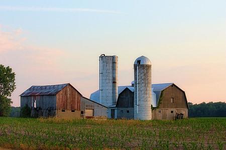 farm, barn, silo, corn, sunset, sky, grass