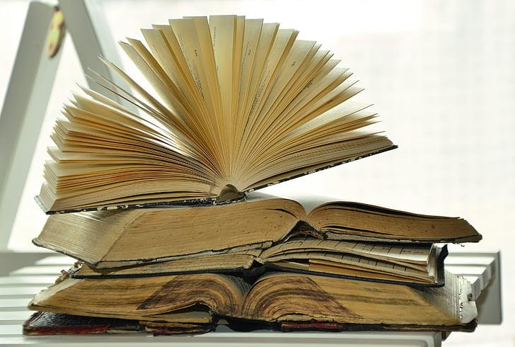 llibres, llibres antics, antiquariat, llegir, utilitzat, llibre antic, mobles