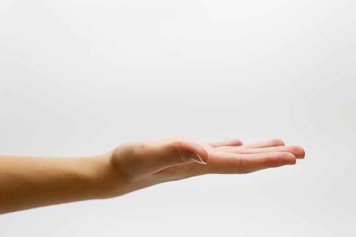 ръка, питам, предлагане, бял фон