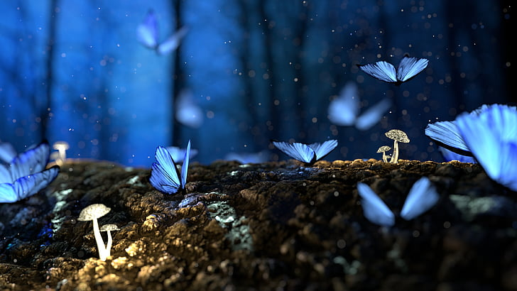 butterfly, 3d, blue, mushroom, forest, fantasy, no people