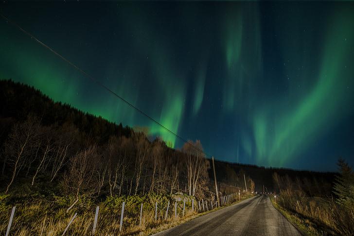 aurora borealis, Lofoten, Norge, nat, grøn, Sky, blå