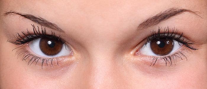 beautiful, close-up, eye, eyebrows, eyelashes, eyes, female