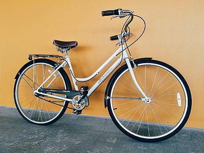 bicikl, bicikala, biciklizam, sportski