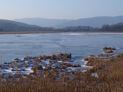 vesi, talvi, Ice, kylmä, talvi unelma, Frost, lumi