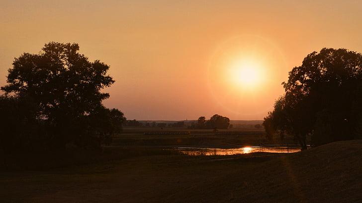 solnedgång, landskap, träd, kvällshimmel, Afterglow, Twilight, Sky