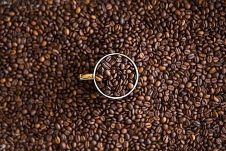 café, feijão, vidro, Copa, caneca, textura, grão de café torrado