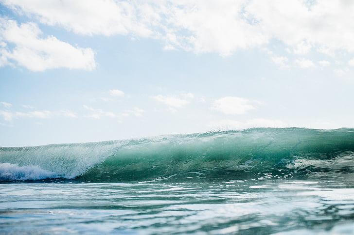 oceano, mar, água, ondas, onda, natureza, movimento