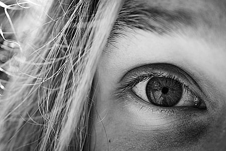 eye, look, vision, cilia, human eye, one person, human body part