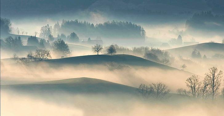 Mountain, Highland, träd, Anläggningen, naturen, Visa, dimma