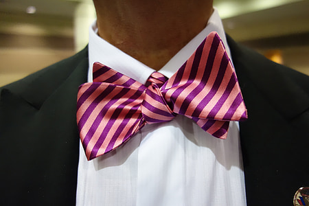 neckware, man, bow, bowtie, formal, party, dress-up