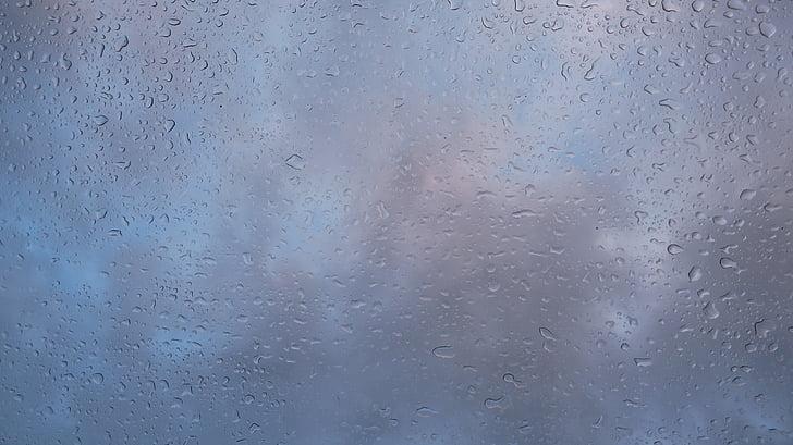 βροχή, μετά τη βροχή, μια σταγόνα, σταγόνες της βροχής, στάγδην, φύση, μετά από