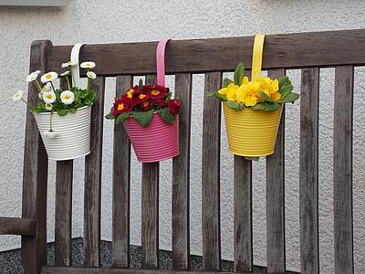 vaso di fiori, pianta da vaso, Portavasi, pot di fiore, fiori, decorazione