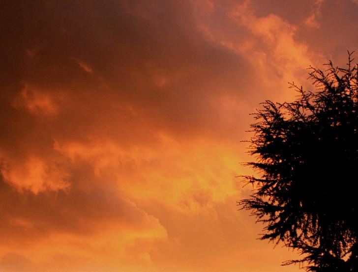 debesis, oranža, silti dzeltenas, siltajā zeltā, ēnas, Mākoņains, sorm