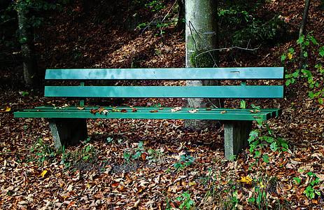 tardor, Banc, seient, terme, fulles, bosc, arbres
