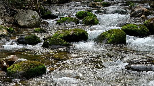 Tatry, hory, Príroda, torrent mountain, vody, Príroda, kamene