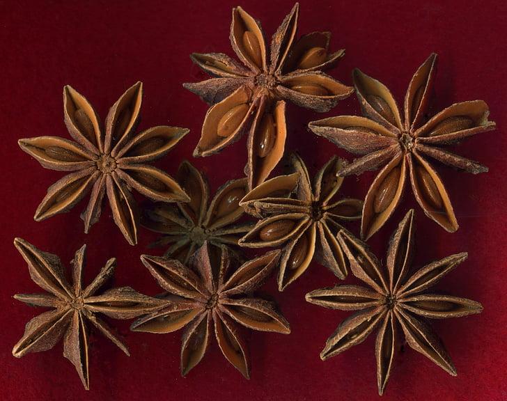 зірки анісу, фрукти, Насіння, Різдво, хлібобулочні вироби, Spice
