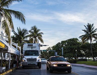 miami, beach, miami beach, dawn, street, palms, truck