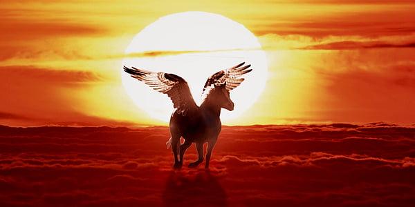 ló szárnyakkal, Pegasus, mítosz, naplemente, háttér, természet, Sky