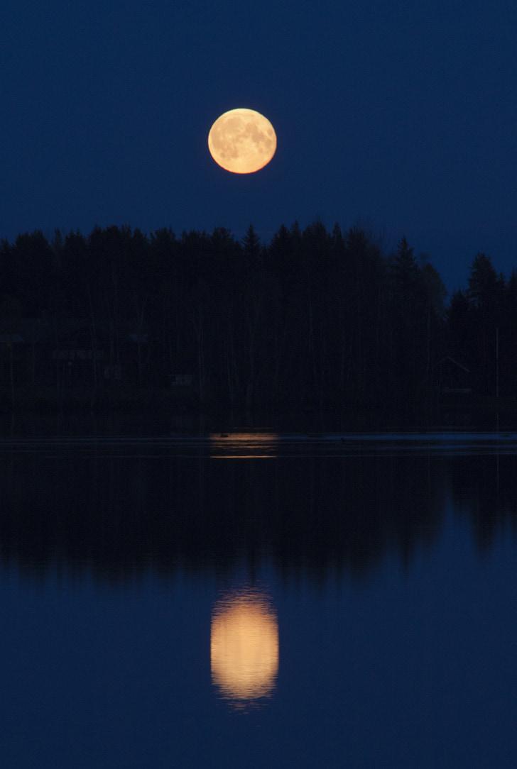 Луна, Восход Луны, Вечер, Темный