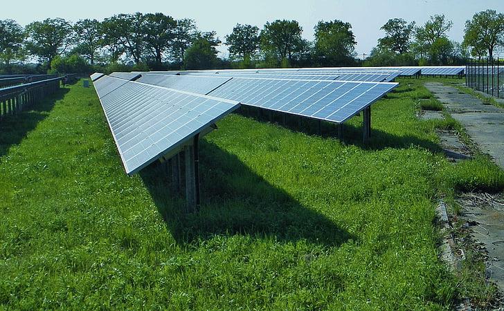 sončne, plošče, vodja postaje, panel polje, energije, trenutni, sončna energija