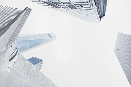 arhitektuur, valge, hoone, infrastruktuuri, pilvelõhkuja, Tower, City