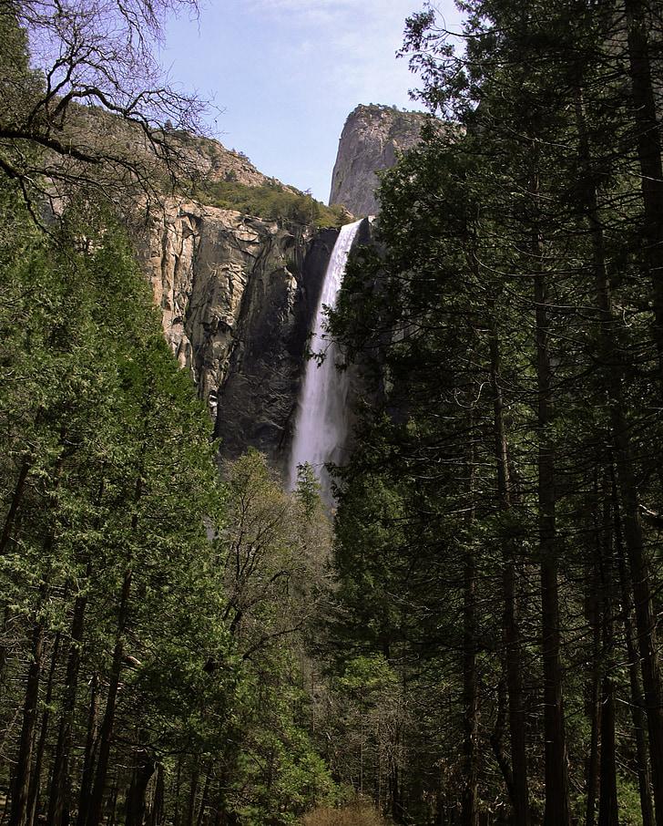 yosemitefalls, Yosemite, Cachoeira, Califórnia, natureza, Parque Nacional de Yosemite, floresta