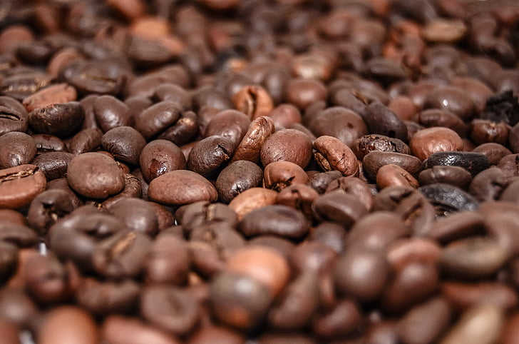 kaffebønner, kaffe, drikken, koffein, bryg, kaffemaskine, aroma